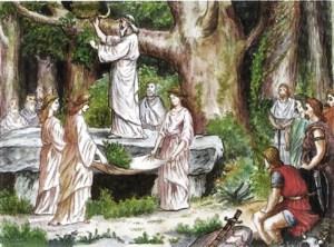 Druids-mistletoe