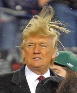 trump-hair