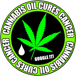 cannabis_oil_cures_cancers_google_it
